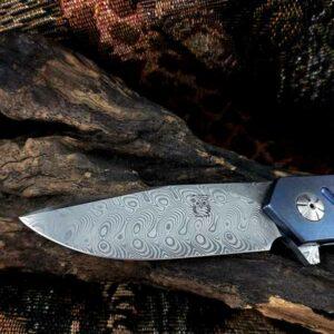 Francois Massyn Flipper Frame lock 6